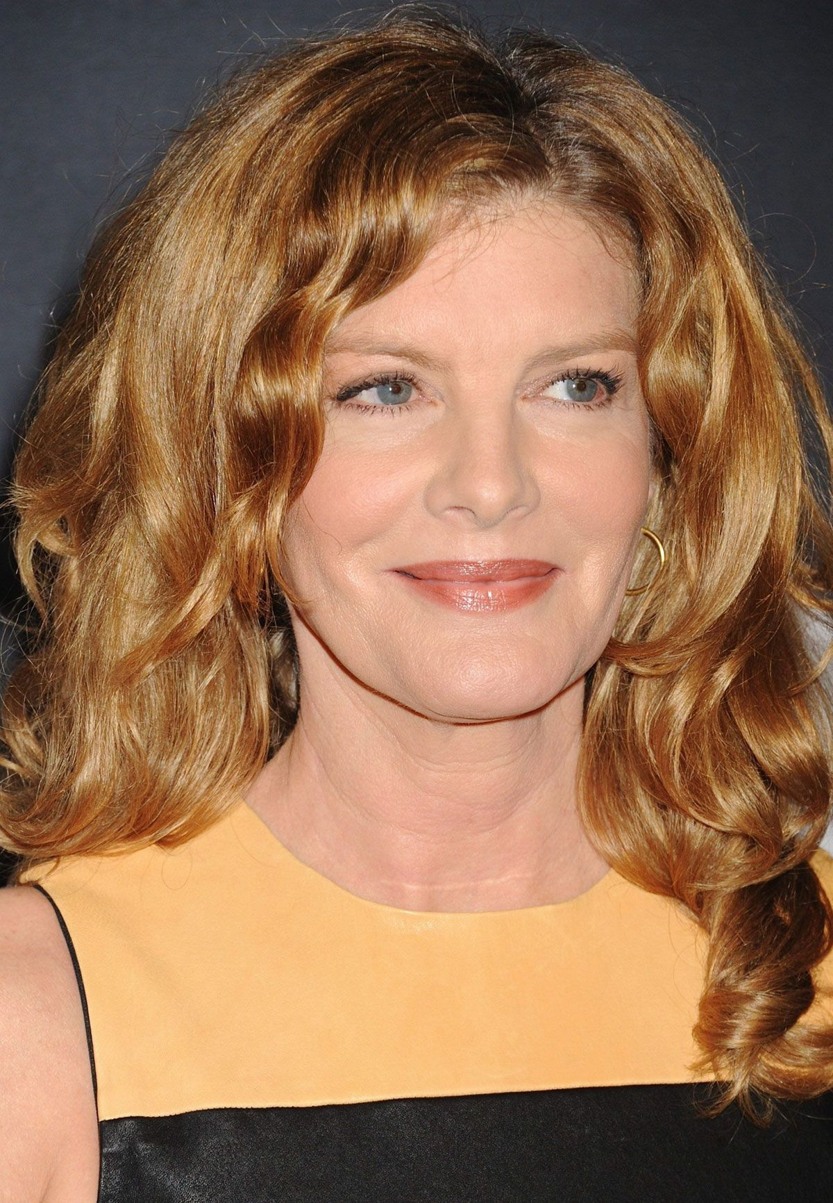 Rene Russo Short Hairstyles Fade Haircut