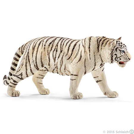 Tiger White 1 White Tiger Tiger Pet Tiger