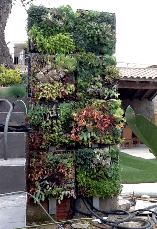 Vertical Succulent Garden With Integrated Outdoor Shower