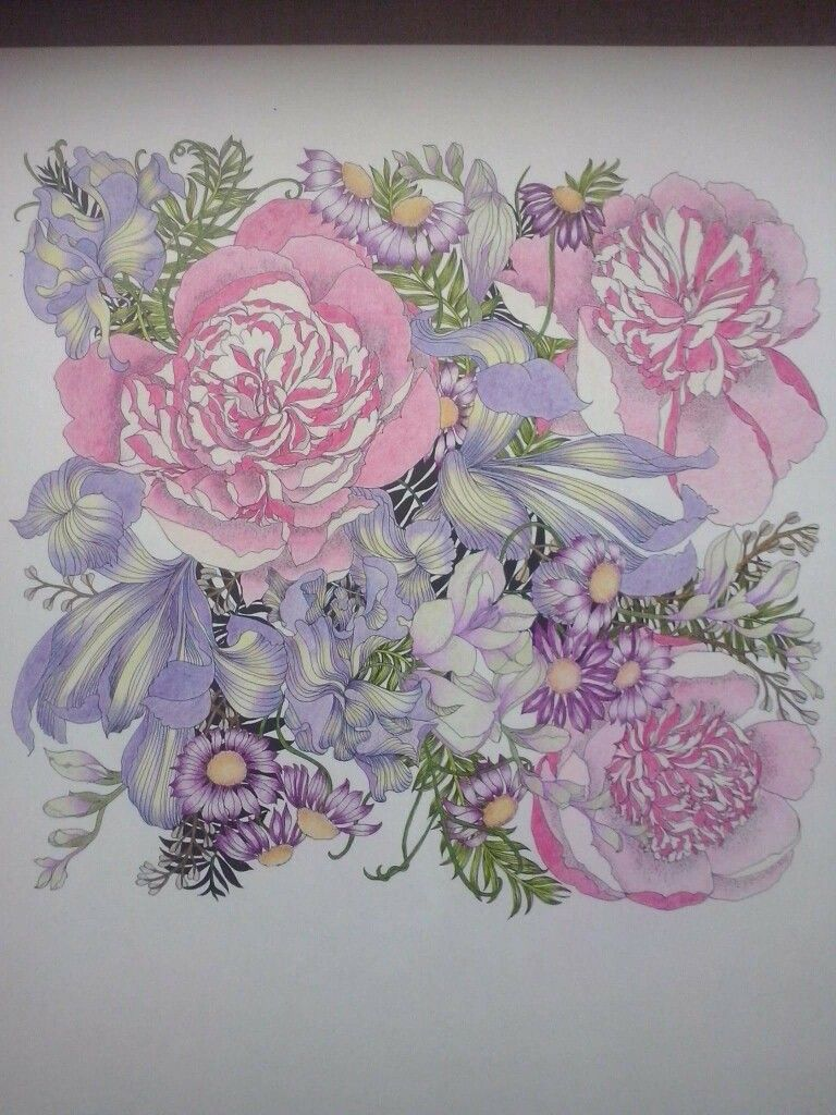 Coloured Pencils Secret Gardens Coloring Books Crayon Art Vintage Pages