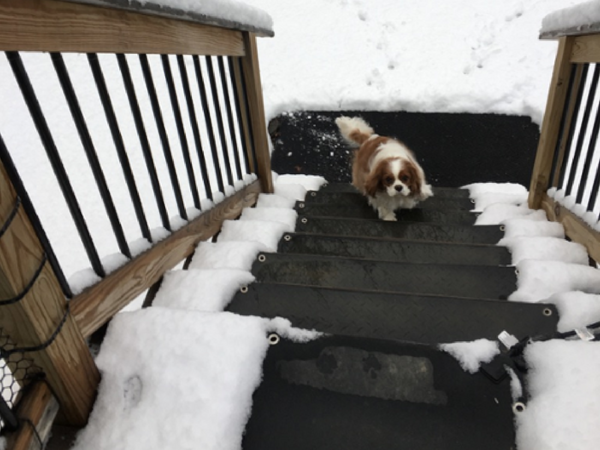 Snow Melting Heated Floor Mats For Your Home Or Business | Outdoor Stair Treads For Winter