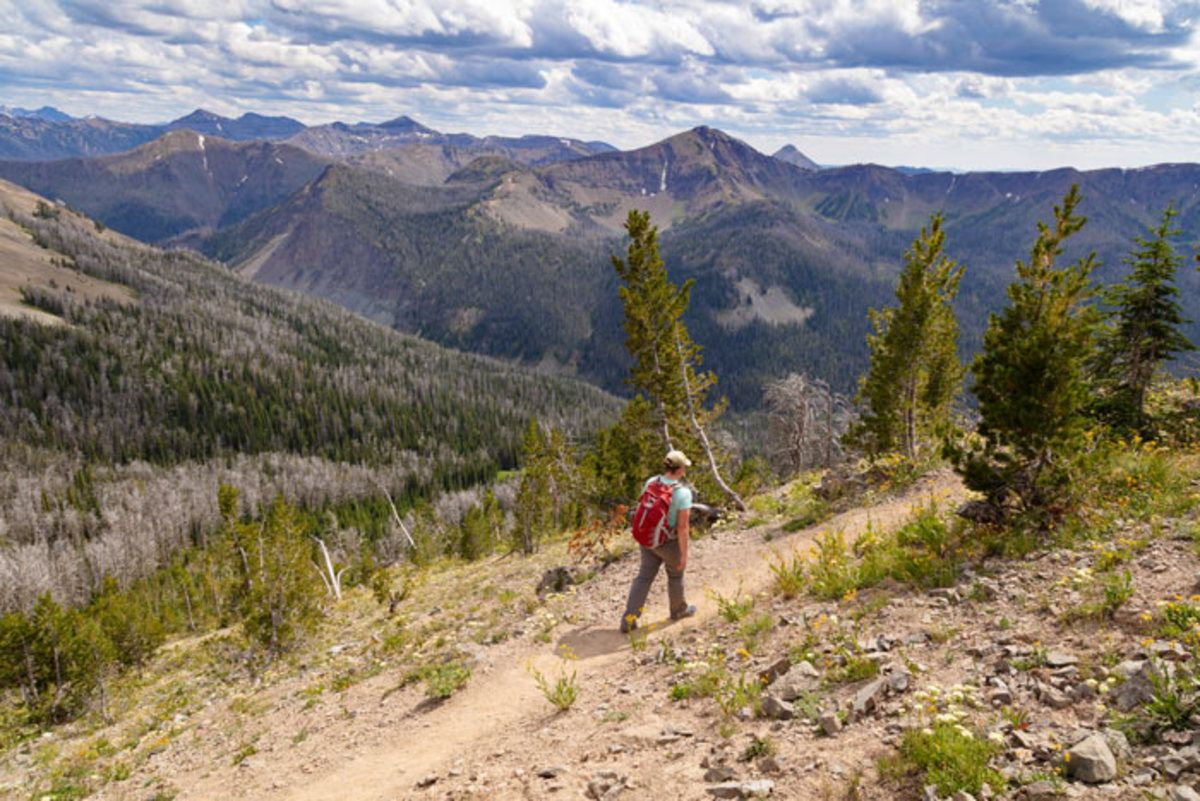 Which Yellowstone Trail Should I Hike?. Do you want to see