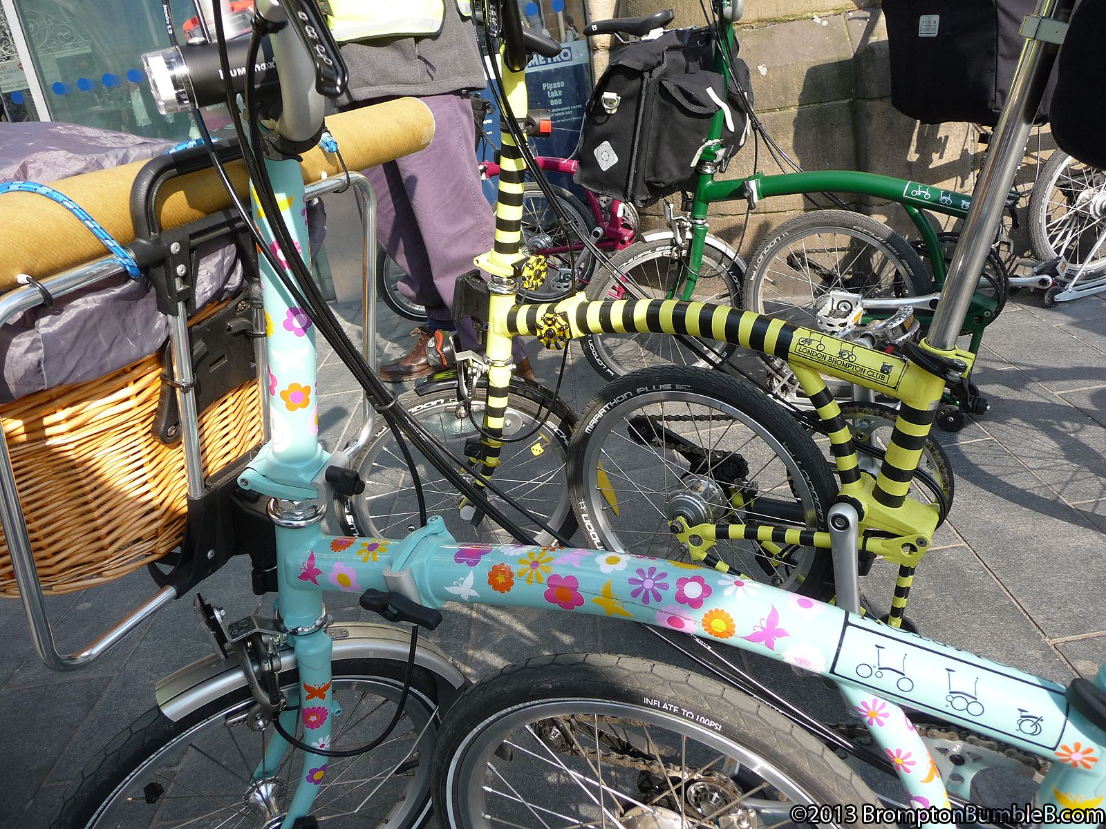 The Legend of the Brompton Bumble B: Bumble B explores Sheffield with some friends