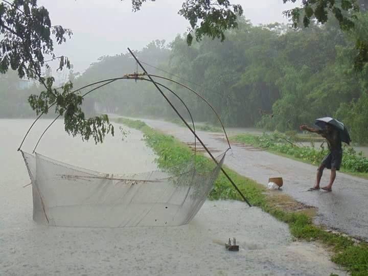 Beautiful Bangladesh Countryside Nature Catching Fish