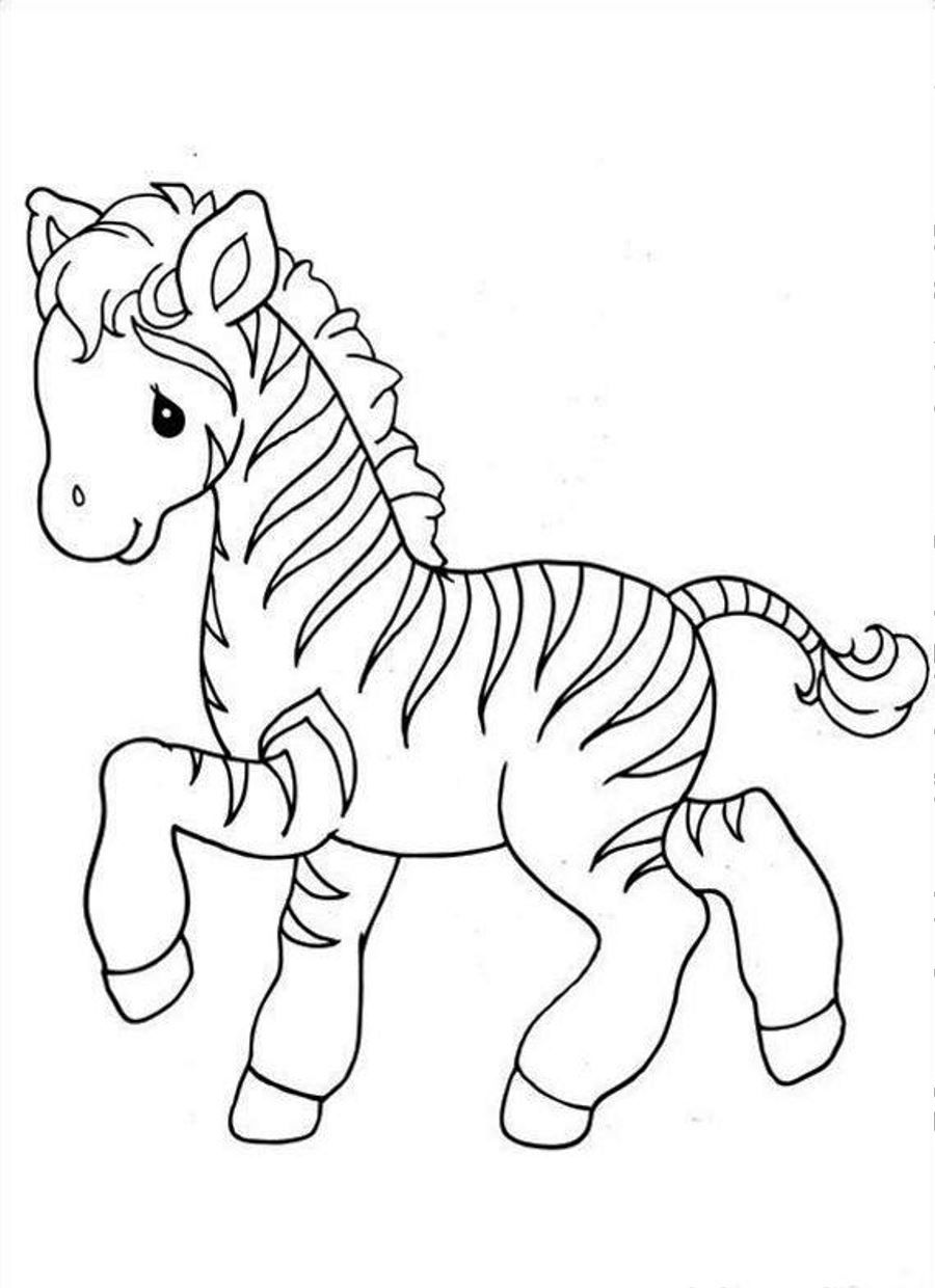 Nice Cute Zebra Coloring Pages   Coloring Pages U0026 Pictures   IMAGIXS