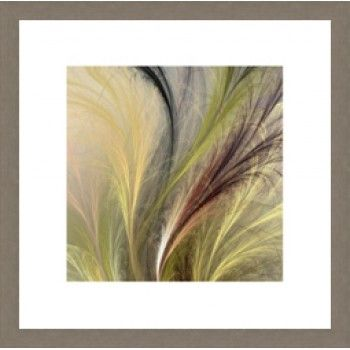 Fountain Grass I