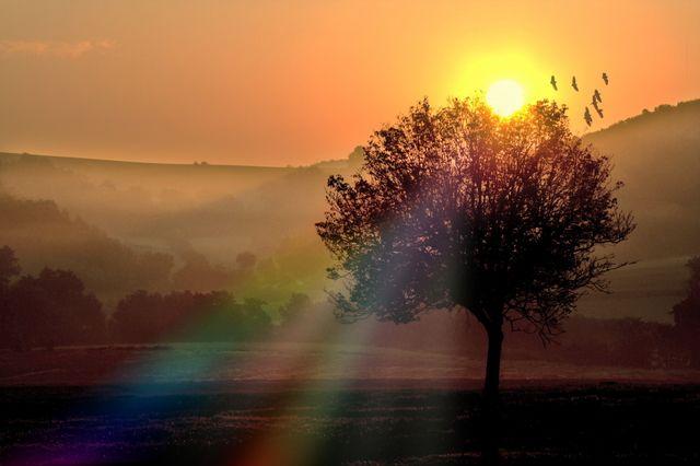 coucher de soleil 05ae95e7f0acc1f7c33017a7e38c1566