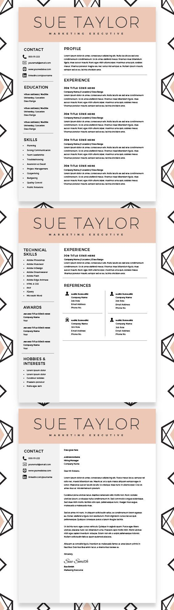 What Does A Professional Resume Look Like Marketing Executive Resume Modern Resume Template Cv Template .