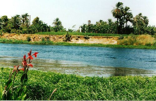 Colors of the Nile