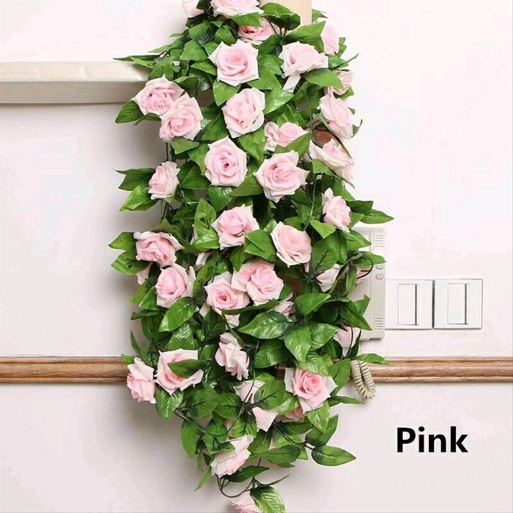 Gambar Bunga Mawar Rambat Bunga Mawar Rambat Tanaman Bunga Mawar Rambat Climbing Rose Gardening On Carousell Beni Bunga Gantung Bunga Buatan Bunga Perkawinan