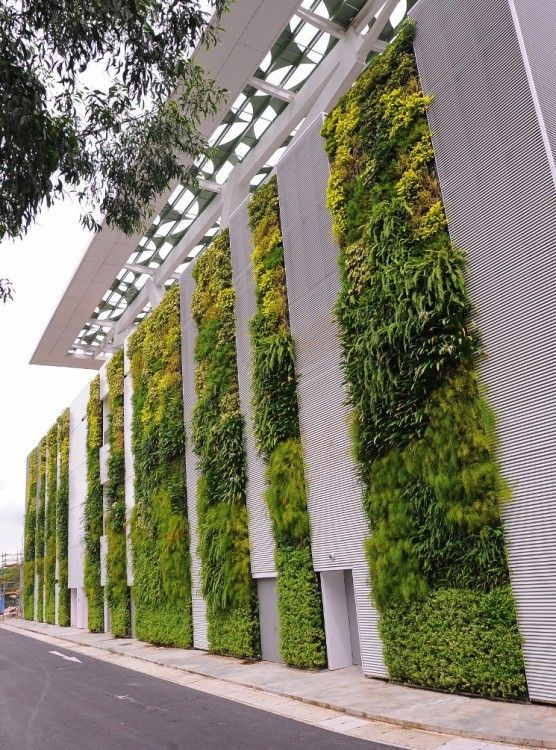 50+ Green Wall Design Inspiration | Living Walls Singapore And Walls
