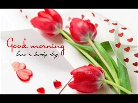Good Morning Video Message(Whatsapp) - YouTube | Good