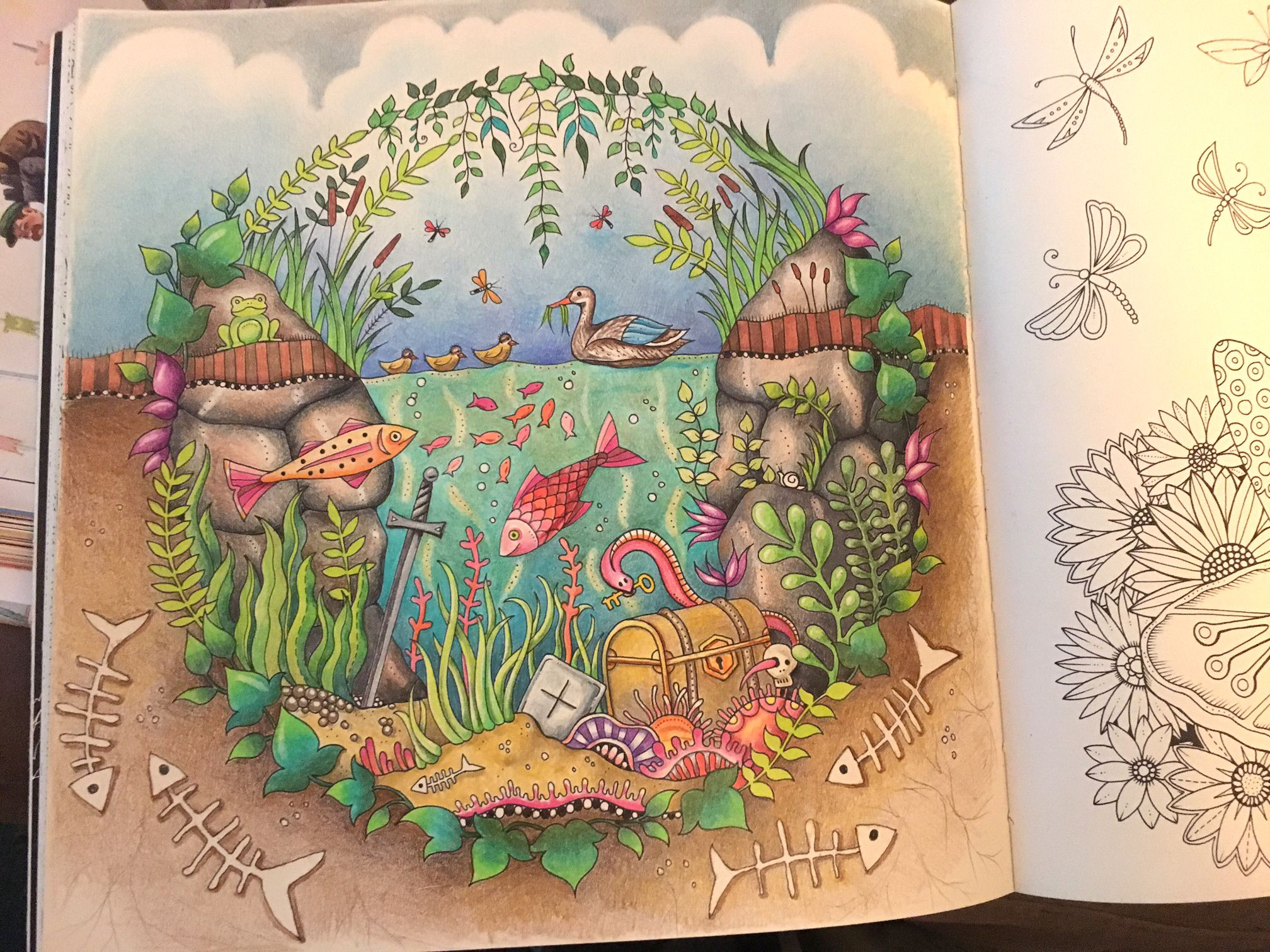 Coloring In Johanna Basford S Enchanted Forest By Jody Marx Enchanted Forest Coloring Book Enchanted Forest Coloring Coloring Book Art