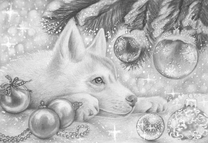 Coloring Pages Animals In Winter : Coloring for adults kleuren voor volwassenen coloring pages