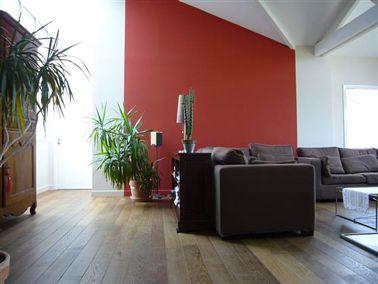 peindre un mur rouge dans salon en association - Association De Couleur Pour Salon