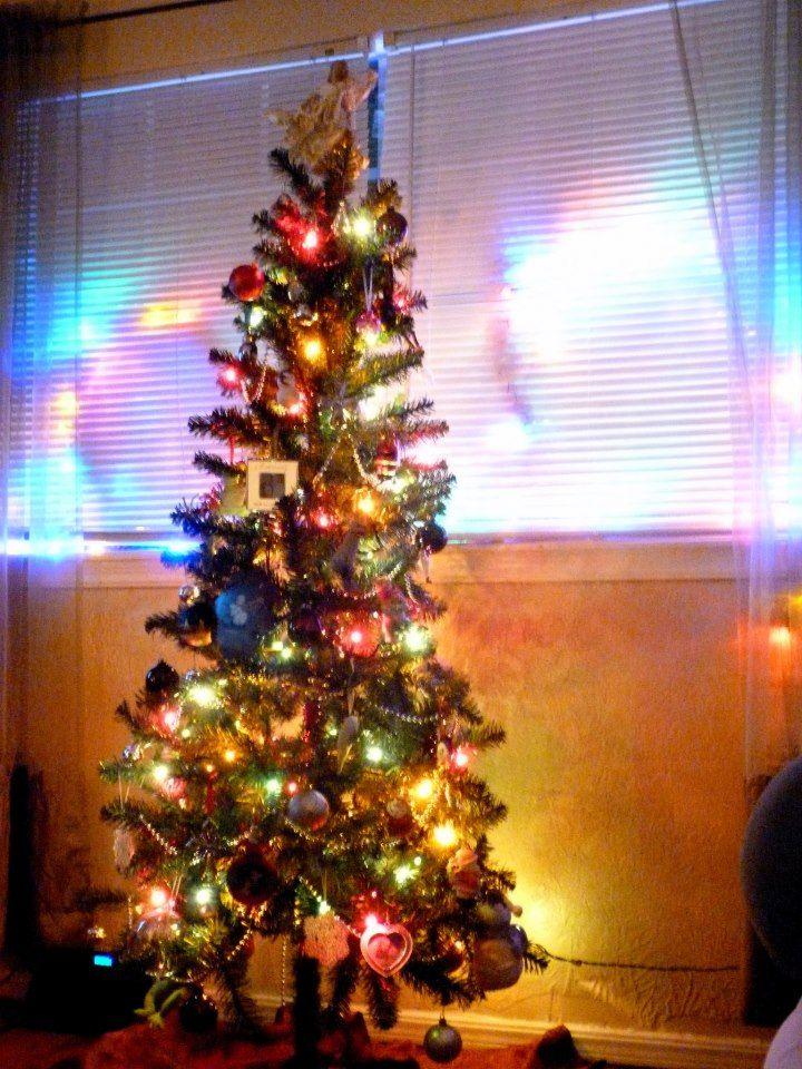 From Rachel Mccready In Oklahoma City Oklahoma Live Christmas Trees Christmas Tree Decorations Christmas Decorations