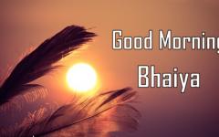 Good Morning Image For Bhaiya Morning Images Good Morning Images Good Morning Images Download