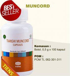 harga muncord obat kuat tiens di apotik umum k24 dan kimia farma