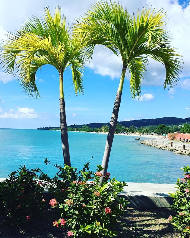 Paradise, St. Croix USVI