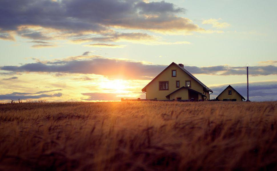 Sunset on the wheat field HD Wallpaper