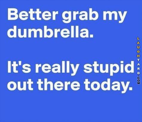 Better grab my dumbrella #funnypictures #lmao #hilarious #funnypics #laughtard #dumbrella #stupid