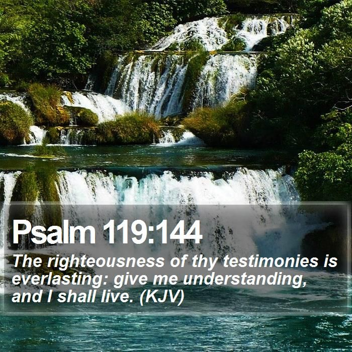 Daily Bible Quotes Text: Pin By Bible SMS On Bible Text Messages
