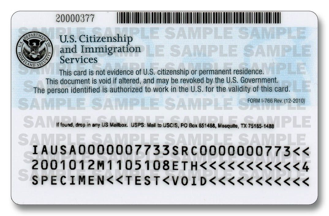 Ice Immigration Id Customs Greencard Citizenship Mexican
