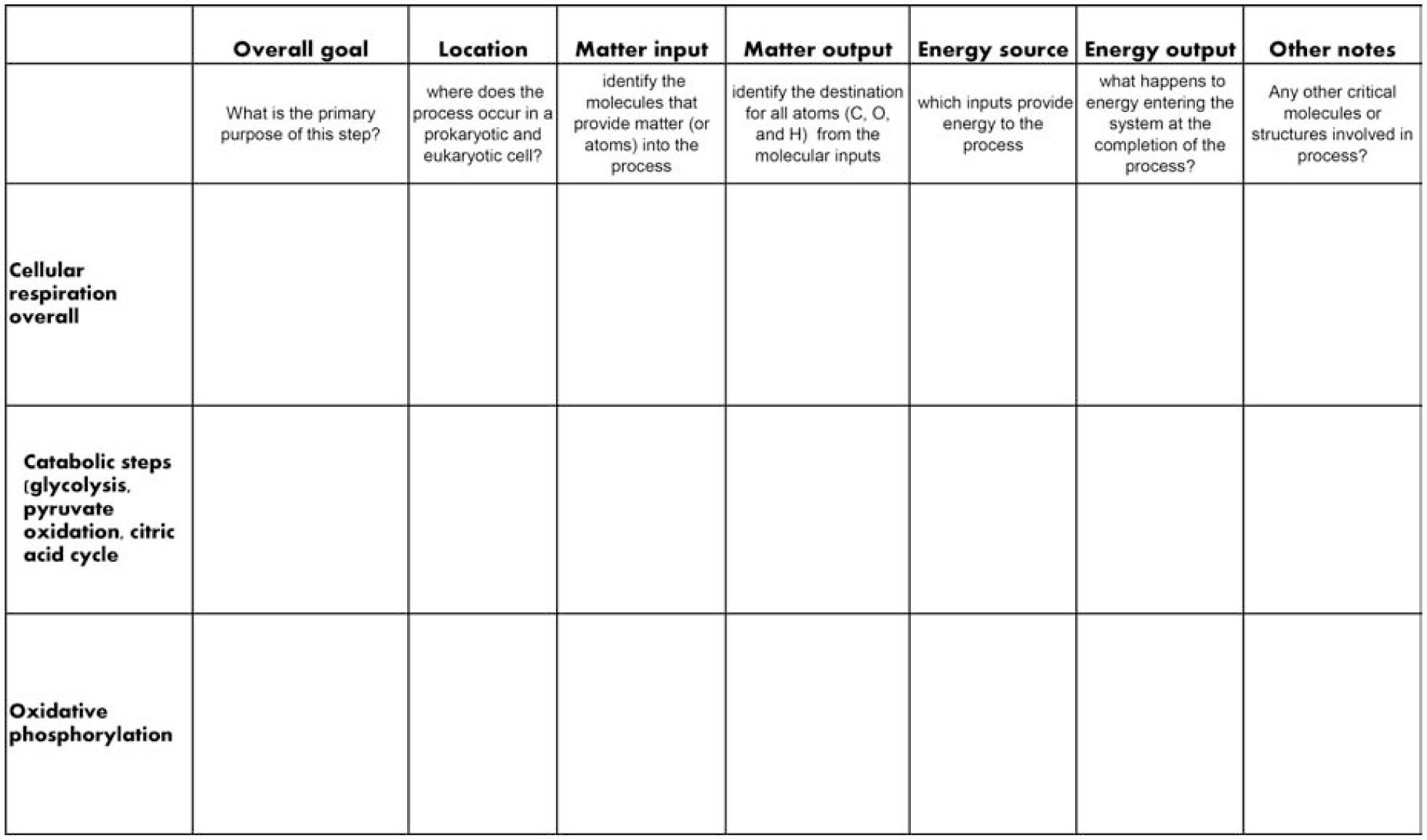 9 Memorable Photosynthesis Activity Worksheet