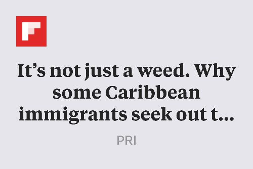 It's not just a weed. Why some Caribbean immigrants seek out this wild plant in Florida. http://flip.it/5WbFr