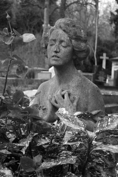 Highgate Cemetery (East)