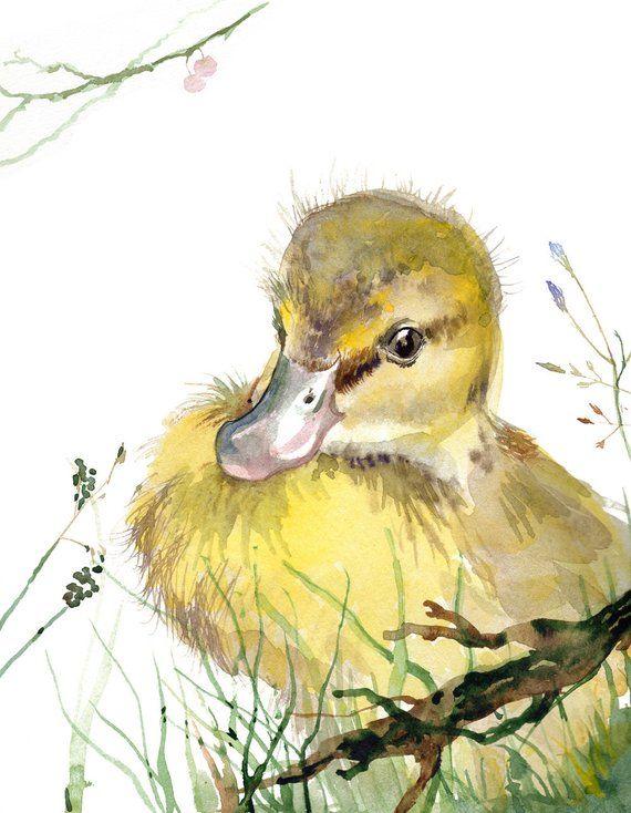 Duckling painting Baby Mallard Duck giclee print b