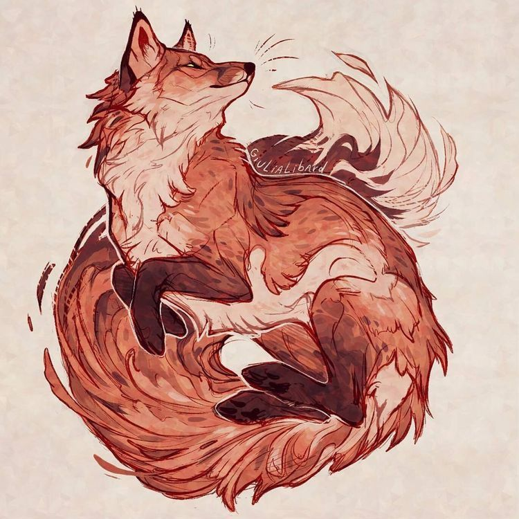 Epingle Par Jade Dulude Sur Renard Art Fox Dessin Renard