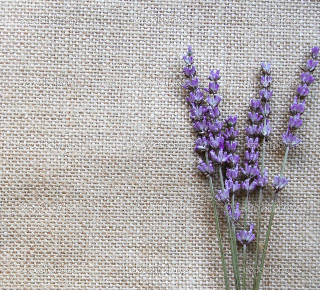 Reference For Dress Colour Flower Wallpaper Lavender Flowers Flower Backgrounds