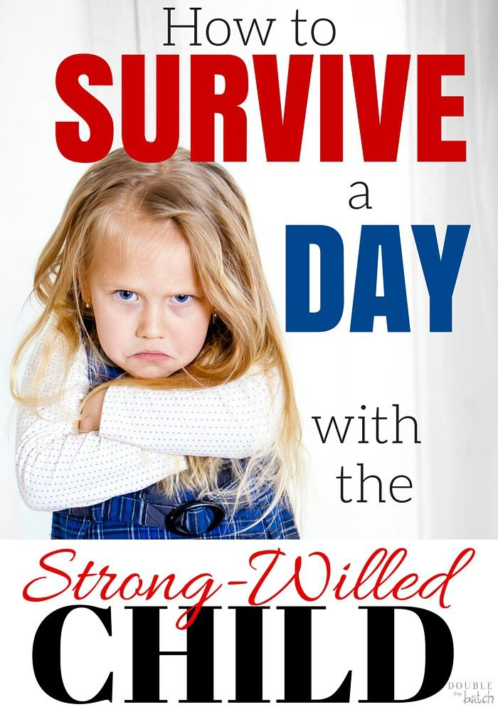 Photo of Surviving a Day with the Strong Willed Child