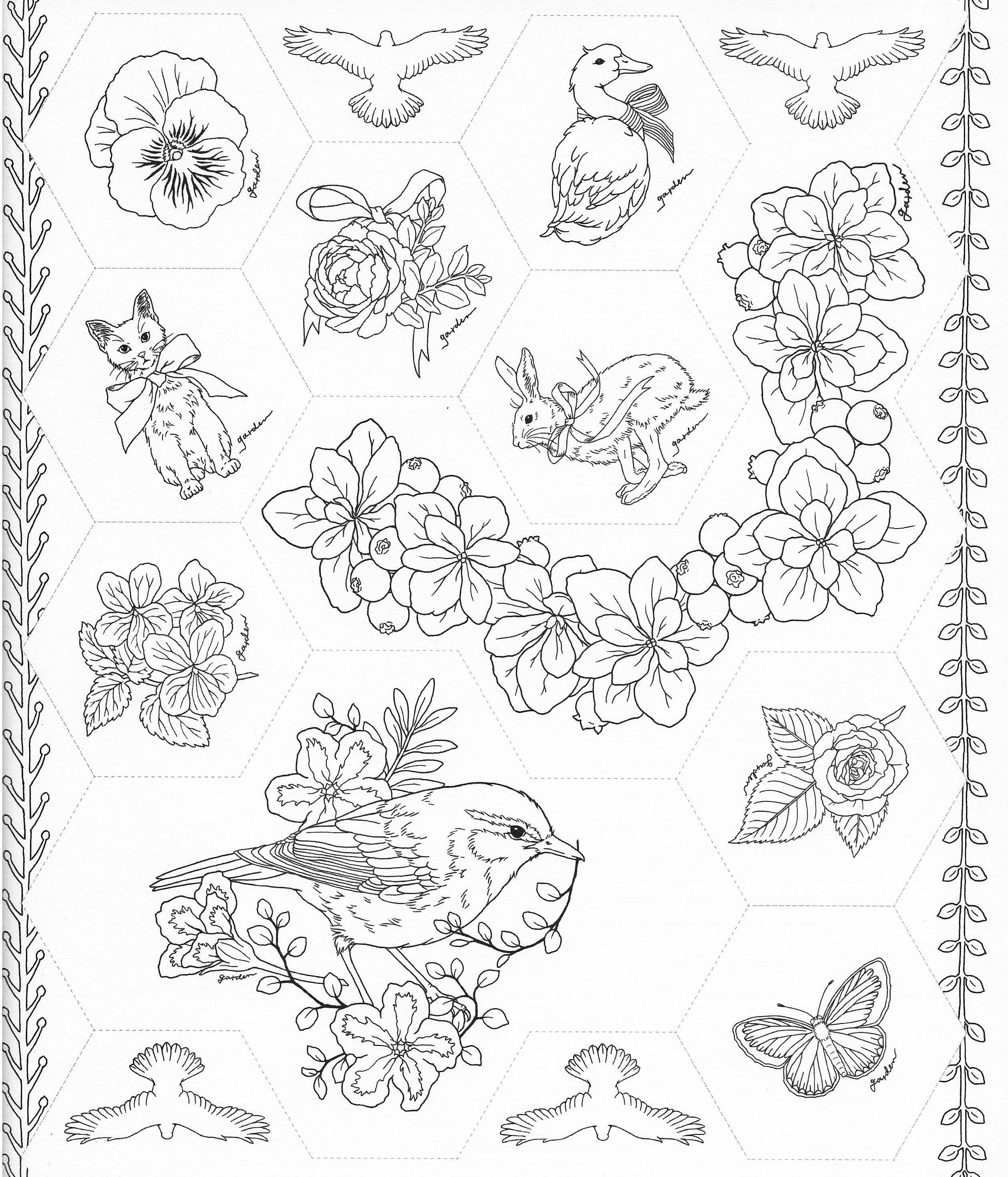 harmony of nature coloring book pg 49 color pages