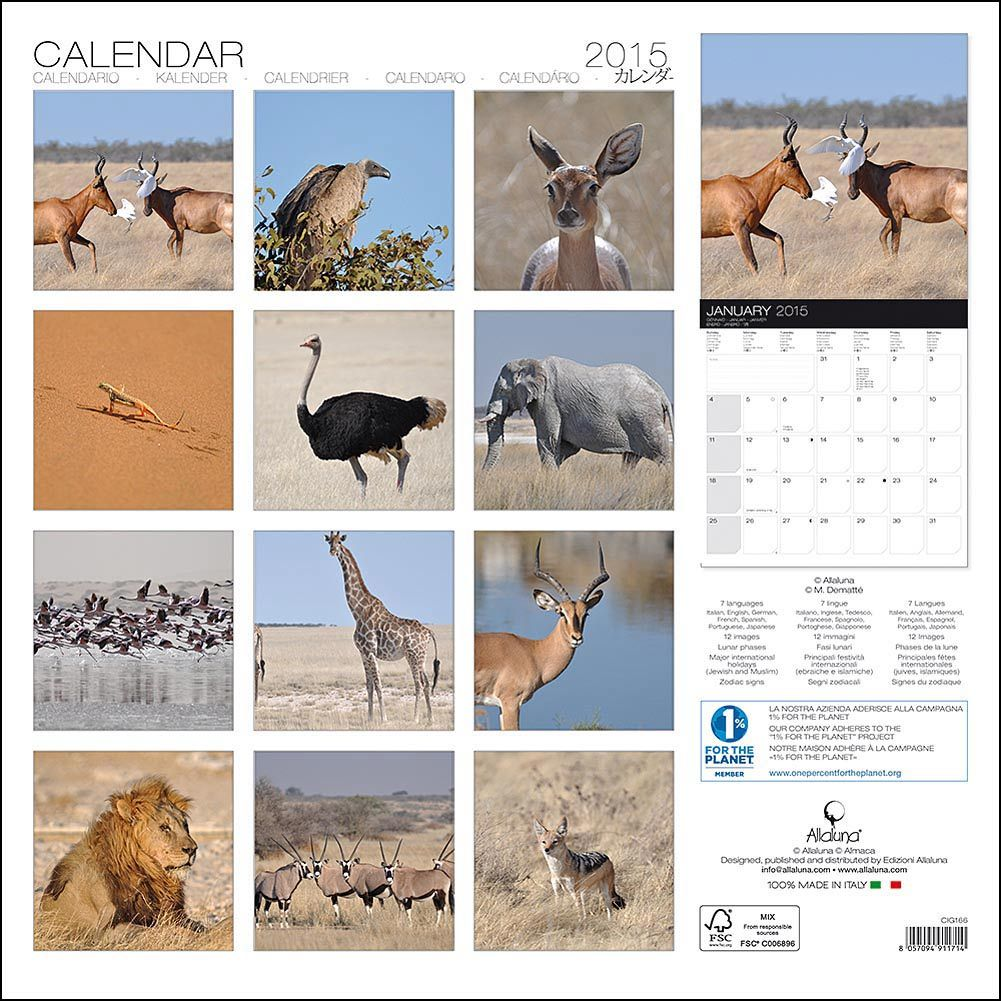 Safari 2015 Wall Calendar: 8057094911714 | Wildlife | Calendars.com