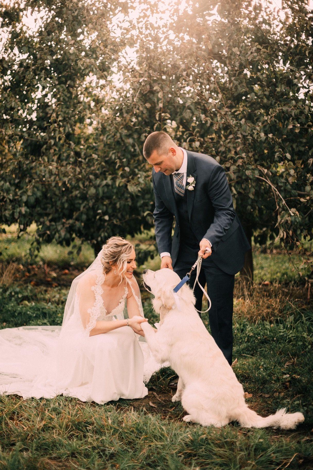 Dog wedding photo inspiration oregon wedding photography