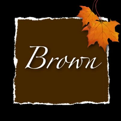 Brown Wedding Ideas