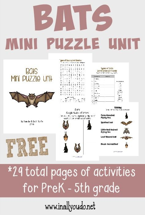 Grab this fun Bats Puzzle Unit to learn more about these fascinating creatures!! Includes Crosswords, Word Searches, Matching & MORE PreK-5th!! :: www.inallyoudo.net