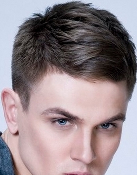 Short Hairstyles for Men with Straight Hair http ...