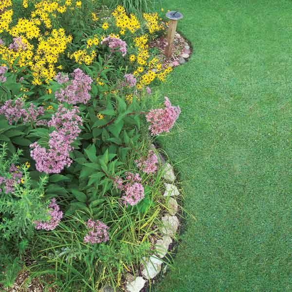 How to Build a Rain Garden in Your Yard - Summary | The Family Handyman