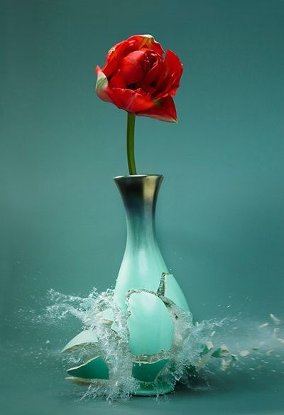 Rose In A Broken Vase Tjn Teal Pinterest Aqua And Turquoise