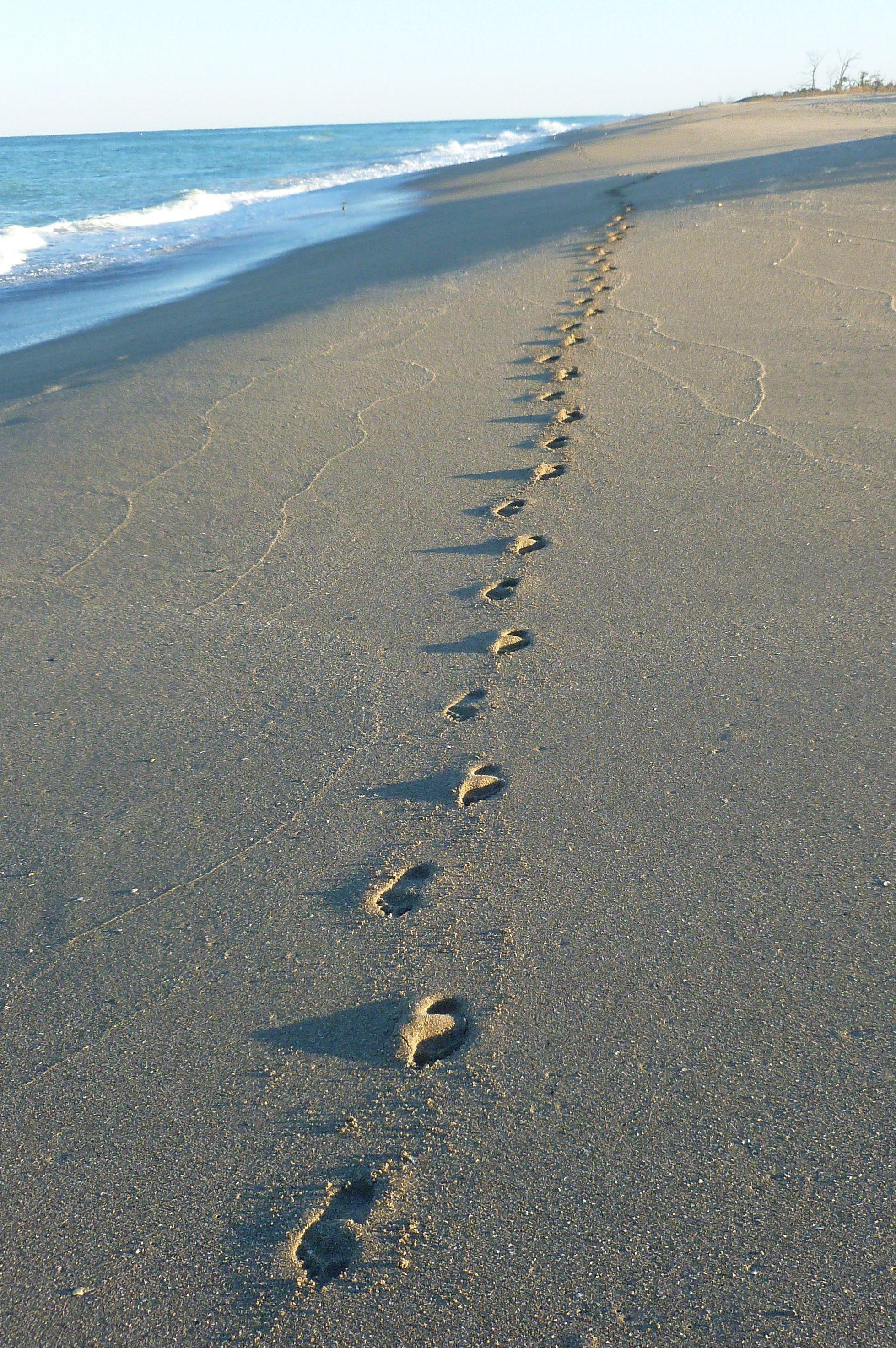 Foot Prints Blind Creek Beach Fl Florida In 2019