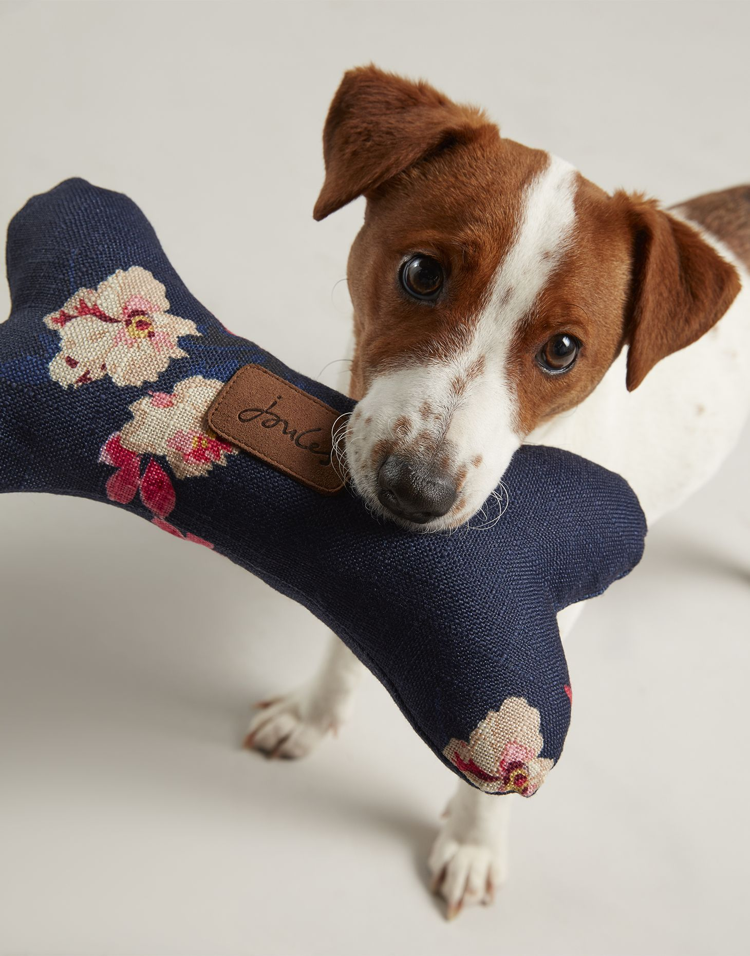 Plush Dog Bone Pet Toy Pet Toys Dog Bones Dogs