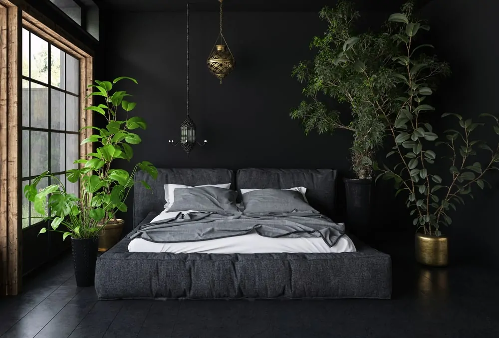 60 Black Interior Design Ideas Black Room Designs Soothing Bedroom Black Master Bedroom Bedroom Plants Decor