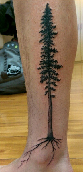 good tree reference / good roots | redwood tattoo ...