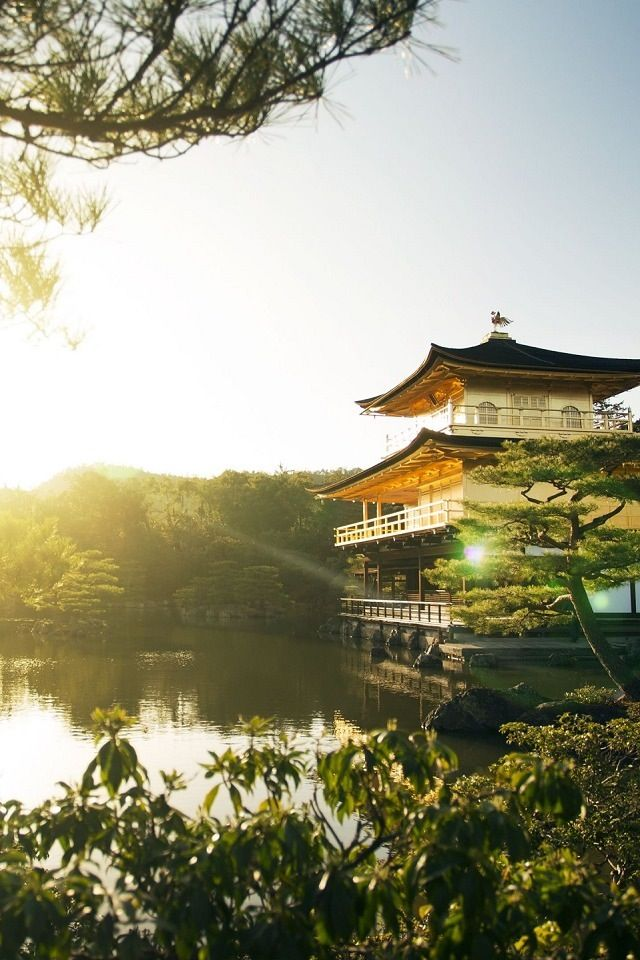 Golden Pavilion Kyoto Iphone Wallpaper Download Ilikewallpaper Is The Best Source For Free Iphone Wallpapers W Japan Holidays Golden Pavilion View Wallpaper Beautiful japanese wallpaper for iphone