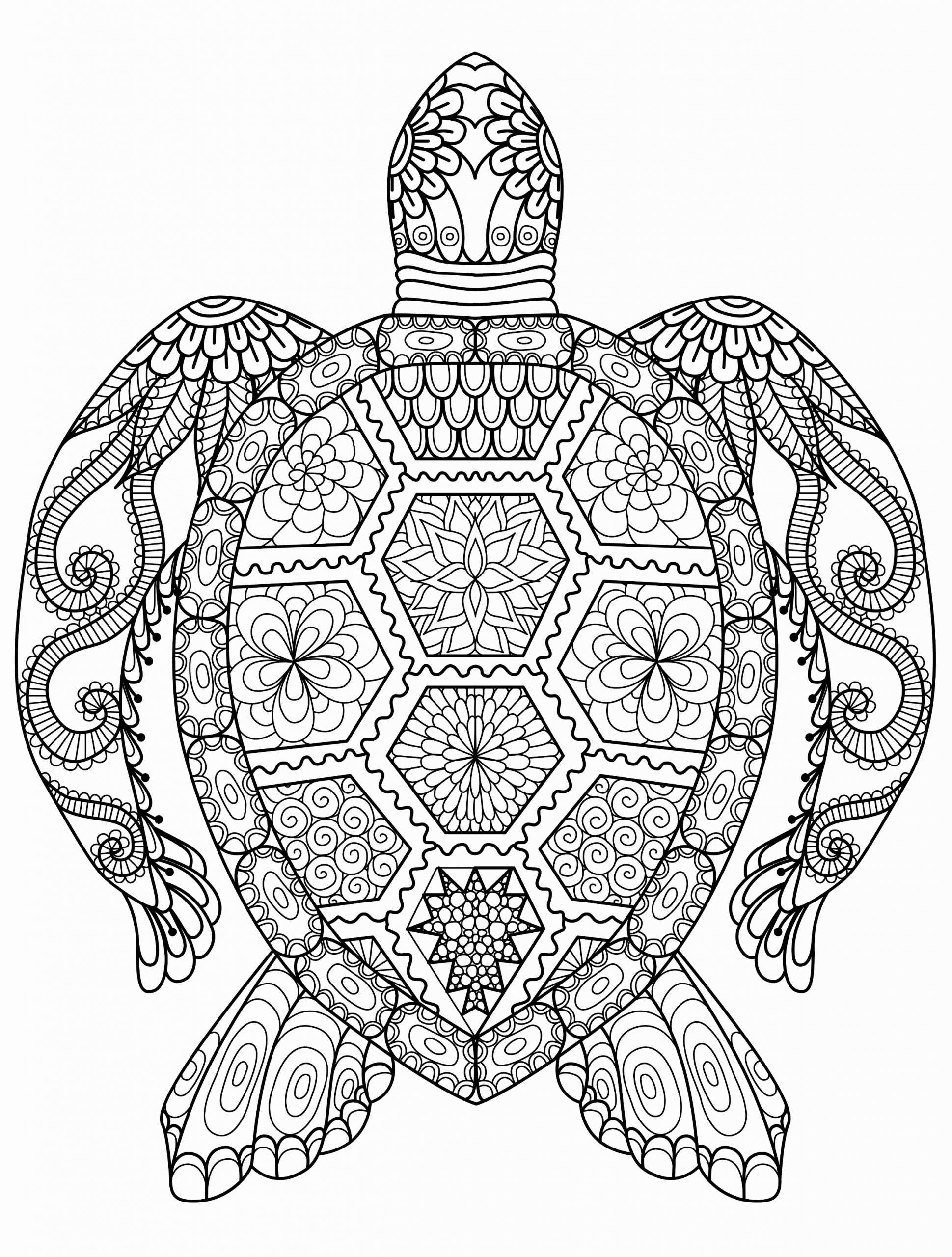 Hard Coloring Pages Of Animals For Kids Turtle Coloring Pages Colouring Sheets For Adults Mandala Coloring Pages