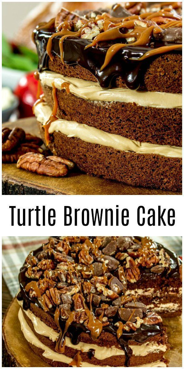 This easy Turtle Brownie Cake is dulce de leche frosting layered with rich chocolate brownies made from boxed mix, and topped with turtle candy pieces and a chocolate ganache. It is a decadent brownie cake that is perfect for Thanksgiving dessert, Christmas dessert or a chocolate-lover's birthday cake! #cake #chocolate #brownies #caramel #pecans #homemadeinterest #turtlebrownies This easy Turtle Brownie Cake is dulce de leche frosting layered with rich chocolate brownies made from boxed mix, and #turtlebrownies