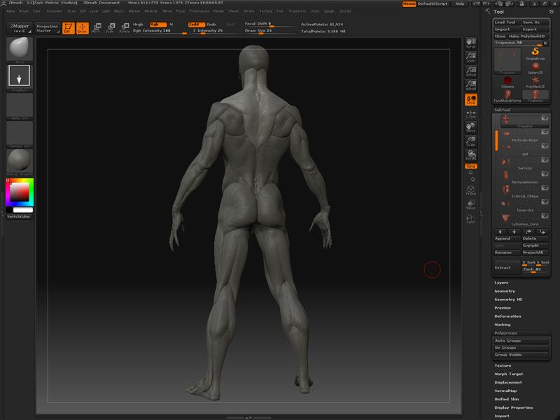 The Gnomon Workshop - Digital Sculpting and Anatomy ZBrush ...